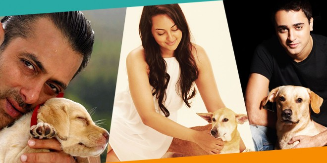 Bollywood Actors and Thier Dogs