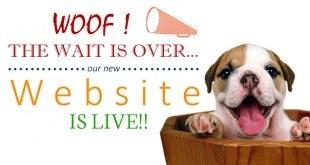 DogExpress - Dog Express India's first dog infotainment website