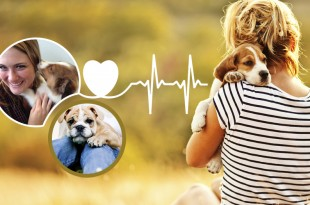 Health Benefits of Having A Dog