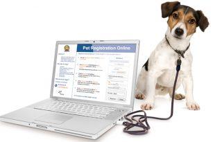 Pet Registration online