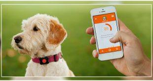 Doglogbook App