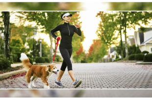 Work Outs You Can Do With Your Dog