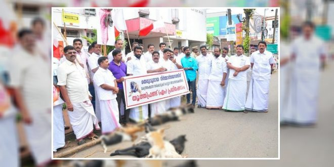 Apologise In Supreme Court For Culling Stray Dogs