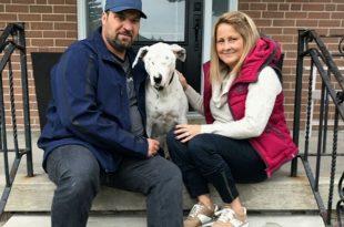 Blind dog adopted