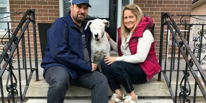 Blind dog adopted