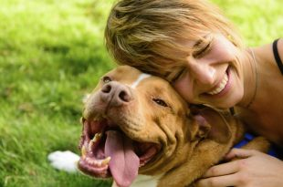 dog with smiling owner