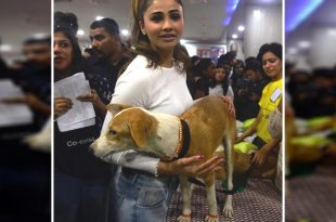 Daisy Shah Adopts An Indian Dog