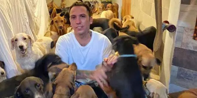 Mexican Man Opens his Home to 300 Dogs in Path of Hurricane