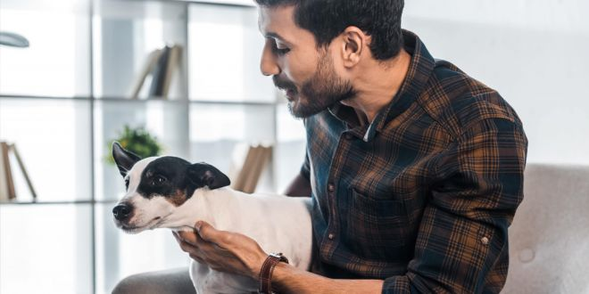 What to Do if Your Dog Hates Your New Partner