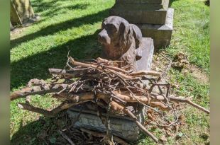 People Leave Sticks to Pay Tribute to a Dog who Died 100 Years Ago
