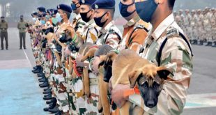 'Galwan', 'Daulat'..ITBP to Name its Dog Squad after Border Regions
