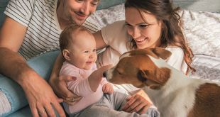 Ten Tips for Safely Introducing Your Baby To Your Dog