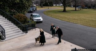 Biden's Dogs Join him at White House