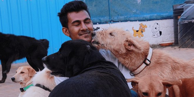 Meet the Dog-Lover from Bengaluru, Who has Rescued Over 2,000 Injured Dogs