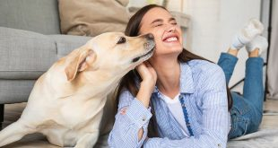 Why Your Dog Has Bad Breath + What To Do About It