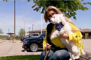 New dog collar claims to help owners communicate with their pets: FOX 8 put it to the test