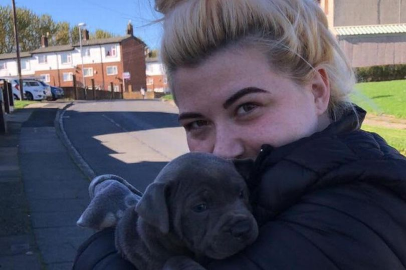 Fight of dog owner to keep her sick pet after he 'saved her life'
