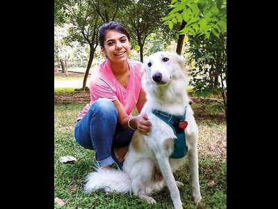 Demand of dog-trainers turned high for 'pandemic' pups