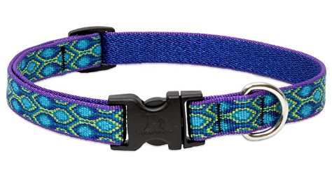 Lupine 34-inch Rain Song Adjustable Dog Collar
