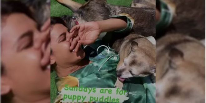 Priyanka Chopra offers glimpse of weekend spent with her dogs