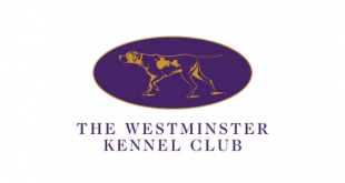THE 145th ANNUAL WESTMINSTER KENNEL CLUB DOG SHOW WILL NOW HAPPEN IN JUNE 2021