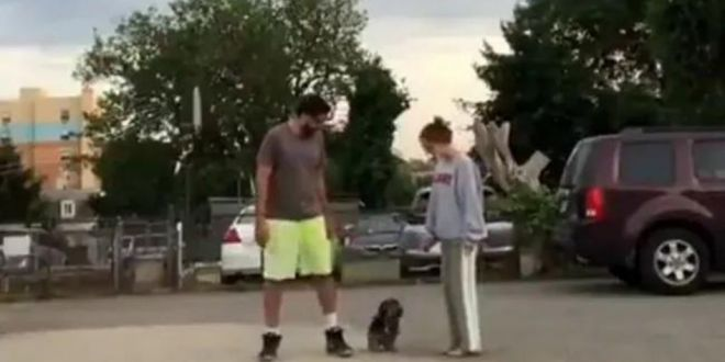 """Viral Video: Dog's Reaction To """"Run In Opposite Directions"""" Challenge Has Twitter In Splits"""