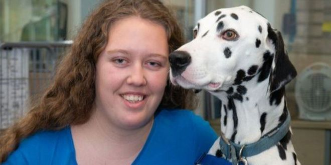Nottingham woman trains pet as first Dalmatian support dog