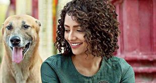 I am a dog lover and I live with them: Susmita Chatterjee