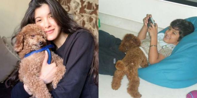 Shanaya Kapoor pens emotional note as she bids adieu to her dog Scooby: Rest easy, my angel
