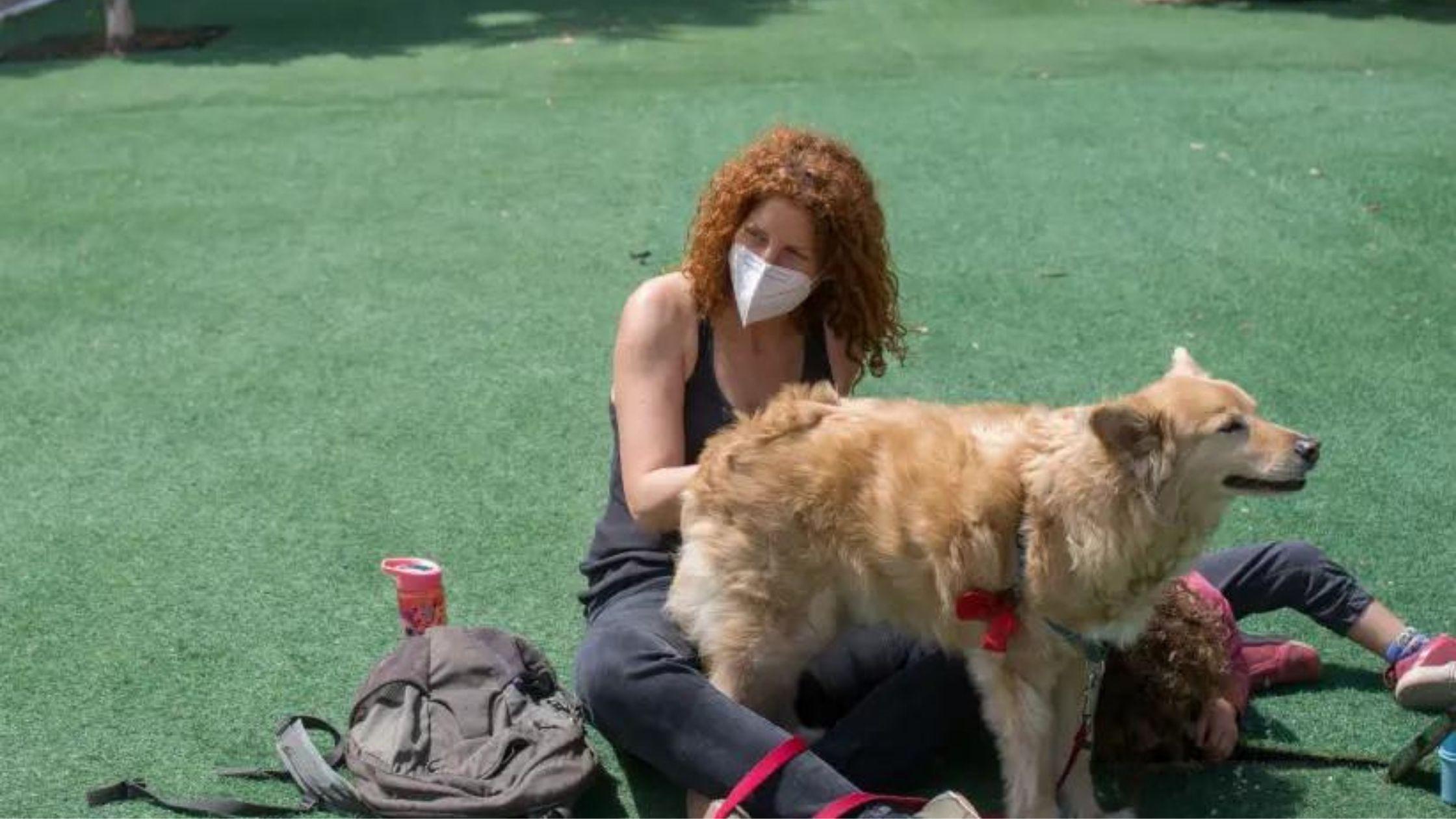 Registering Pet Dog's DNA Becomes Mandatory in Tel Aviv, Israel