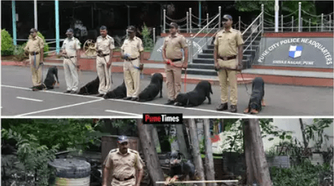 Get to know about Pune's K9 dog squad
