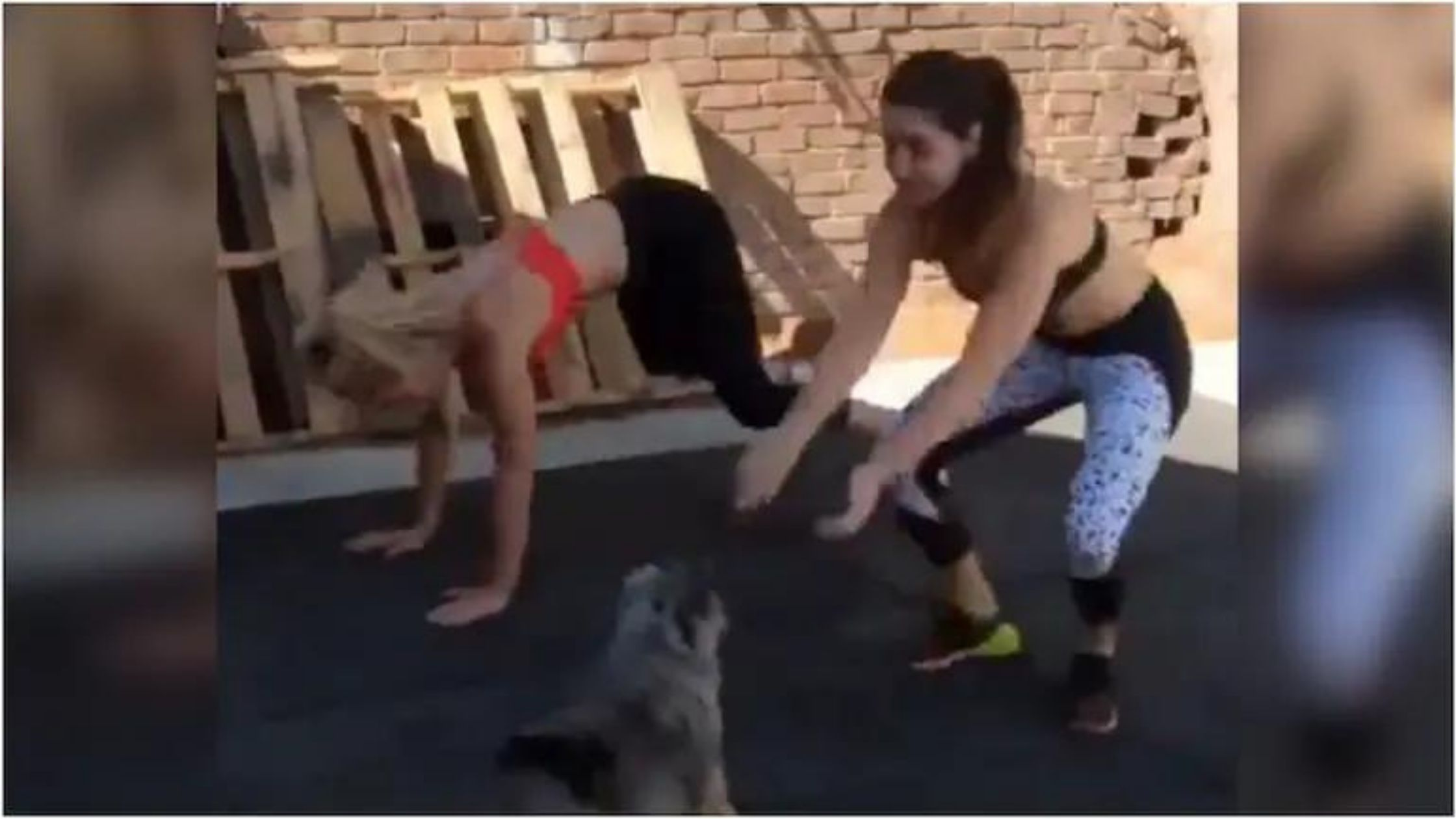 New viral: Cute video of two girls working out with pet dog