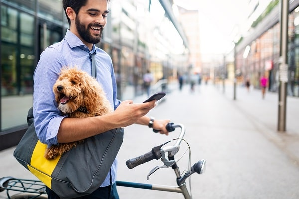 7 Best Apps For Every Pet Owner in 2021