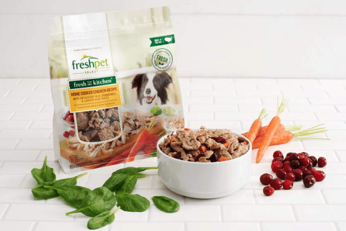 FreshPet Launches Fresh Vegetarian Dog Food Brand In The US