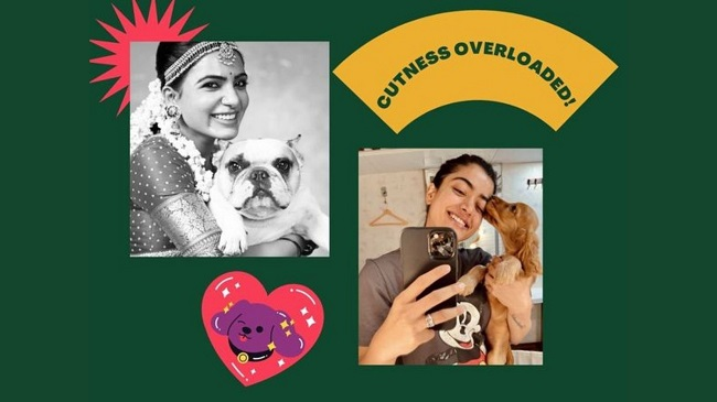 These Celebs From The South Are Doting Pet Parents