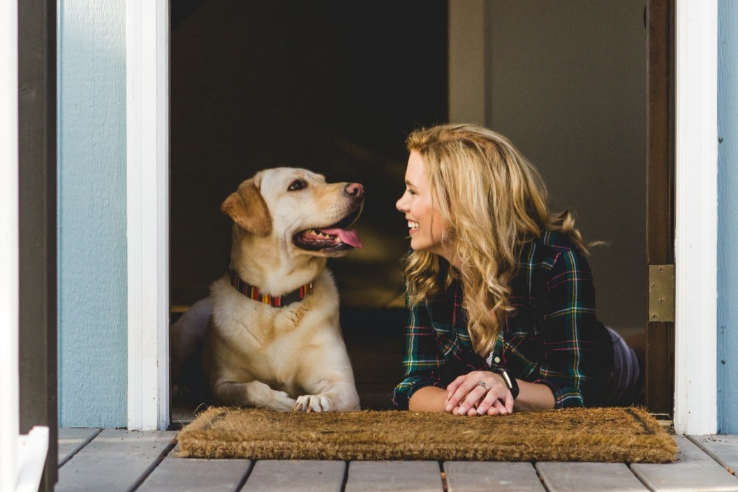 8 Excellent Ways to Keep Your Dog Healthy and Happy