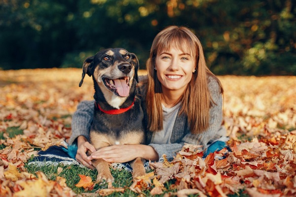 Autumn Care And Safety Tips For Your Dog