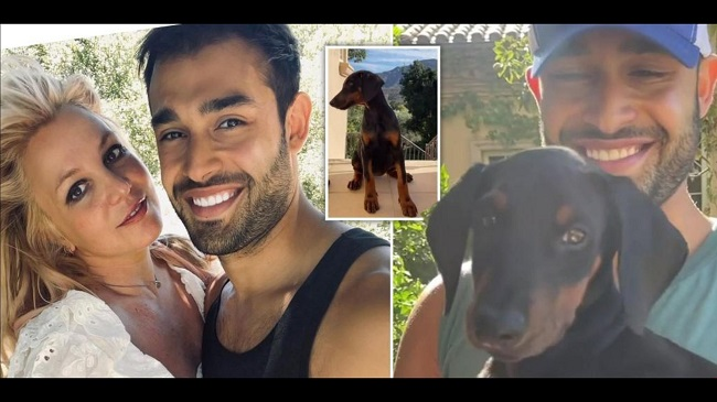 Britney Spears' Fiancé Gifts Her A Dog