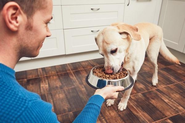 FDA Recalls Tuffy's Pet Dog Food In The US