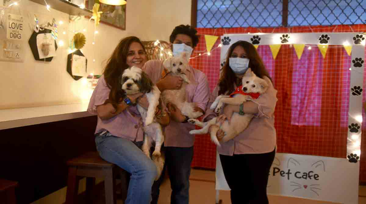 The Dog Café In Hyderabad Makes Stray Dogs Feel Loved